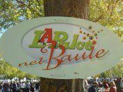 Pala De Andre' - LA PULCE NEL BAULE