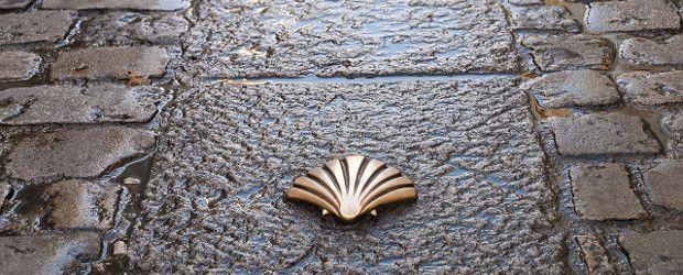 cammino-di-santiago_sito.jpg